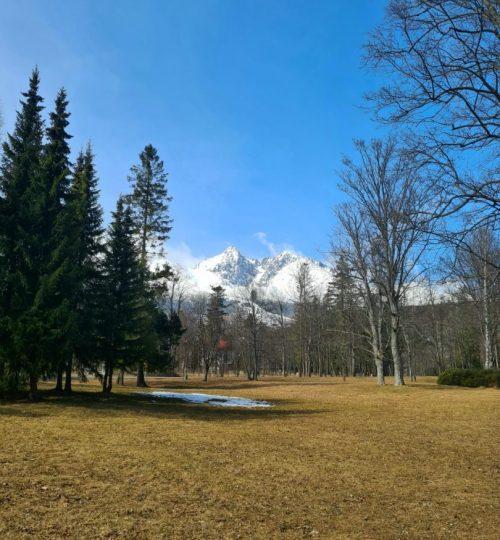Park v Tatranskej Lomnici 1.2km